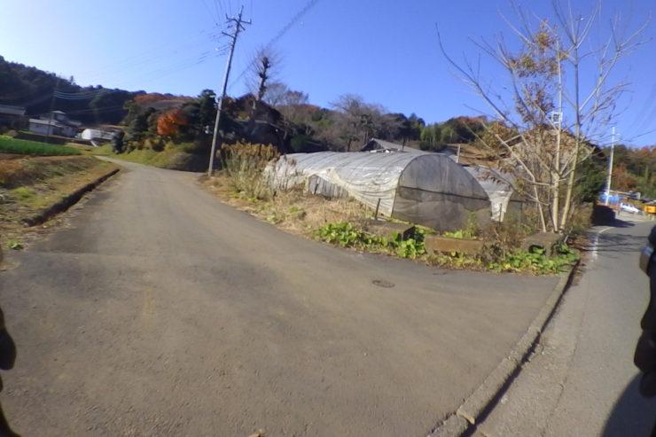 小山田緑地周辺