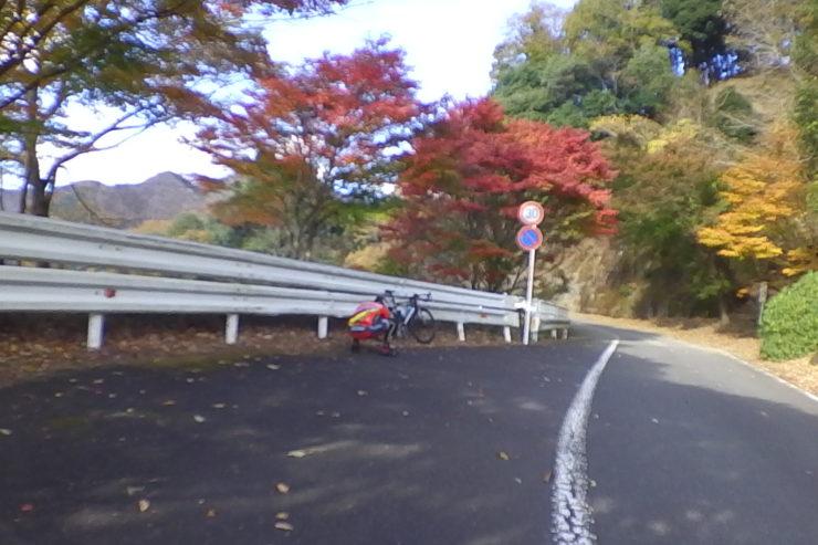 紅葉撮影風景