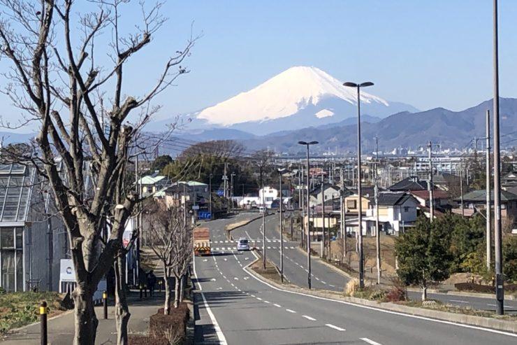 慶応義塾大学脇の道
