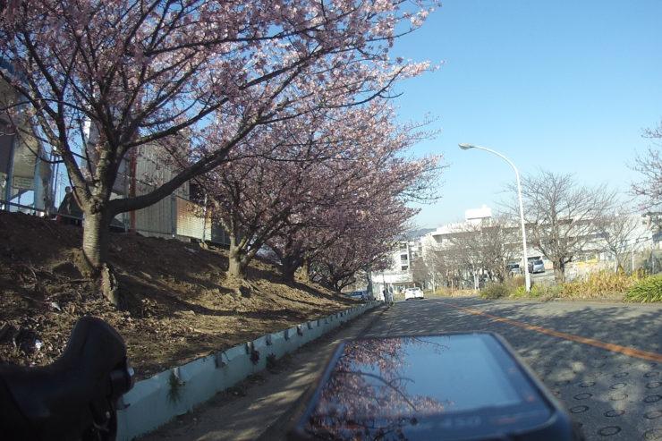 三崎口駅周辺