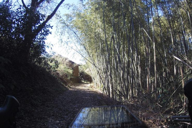 大井町の農道