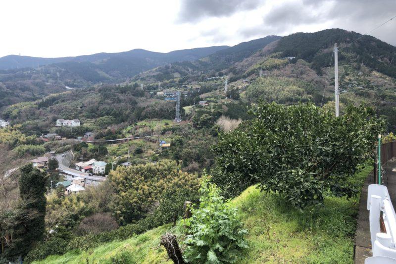 根府川の高台からの景色