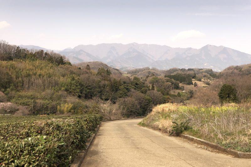 大井町からの眺望