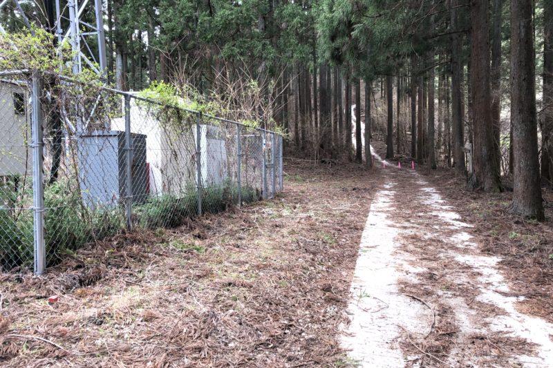 県立21世紀の森の電波塔