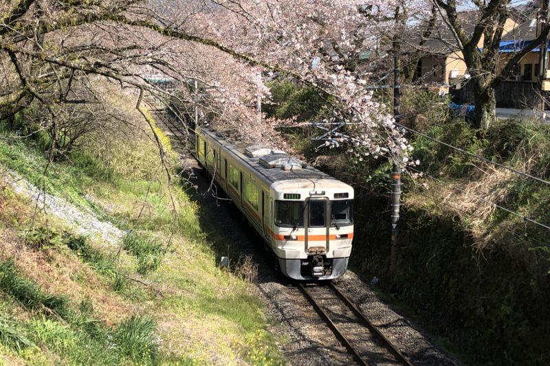 山北駅近くの桜と列車