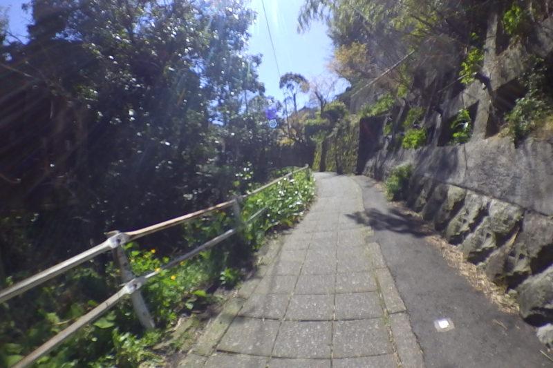 報国寺への裏道