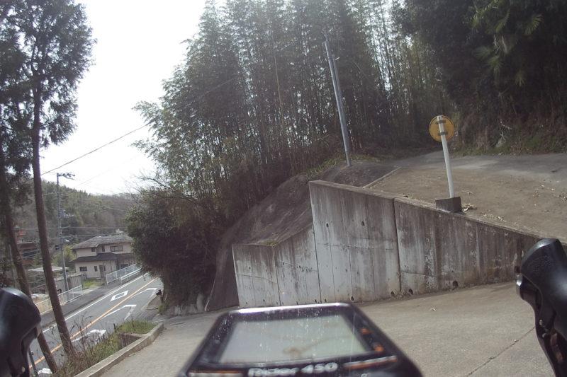 竹藪へ続く道