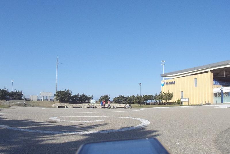江ノ島水族館クラゲ広場