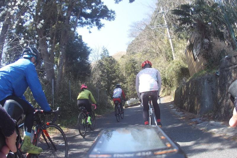 大野山からつぶらの公園への道
