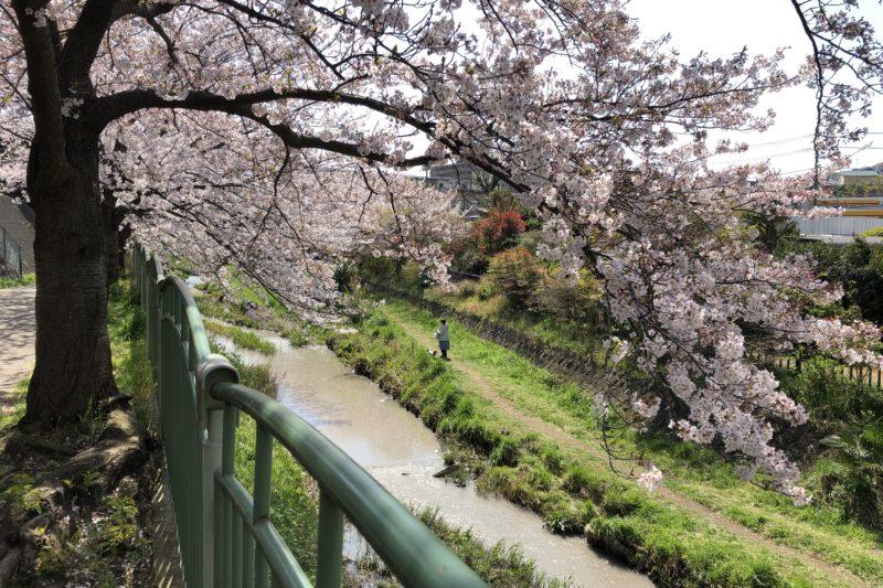平戸永谷川