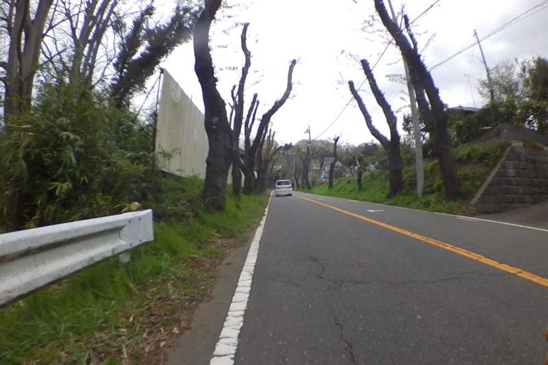 津久井湖周回路