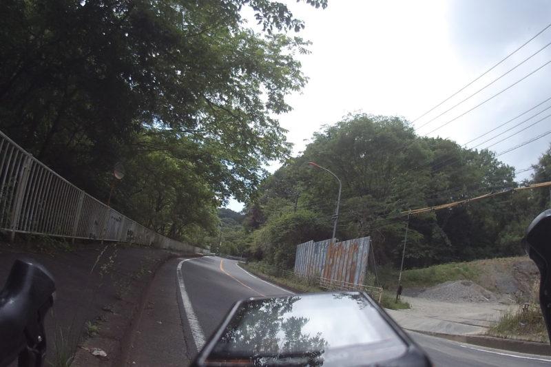 道端の木陰