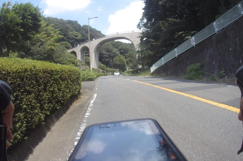 県立七沢森林公園
