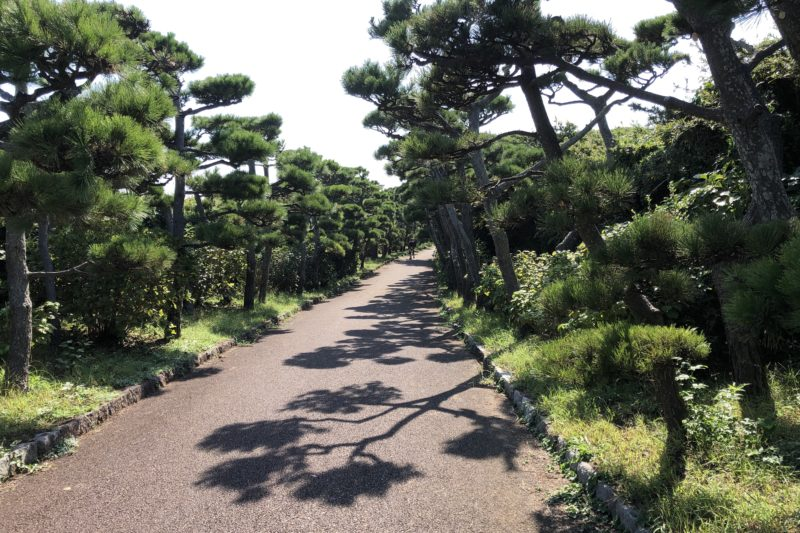 城ヶ島公園の通路