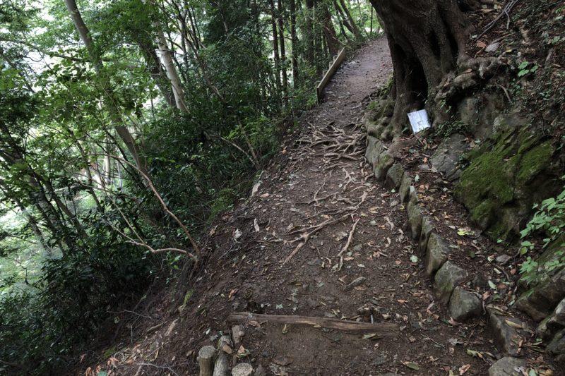 高尾山4号路
