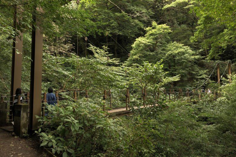 高尾山4号路吊り橋