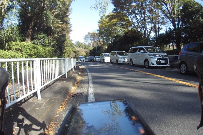 こども自然公園駐車場待ちの渋滞