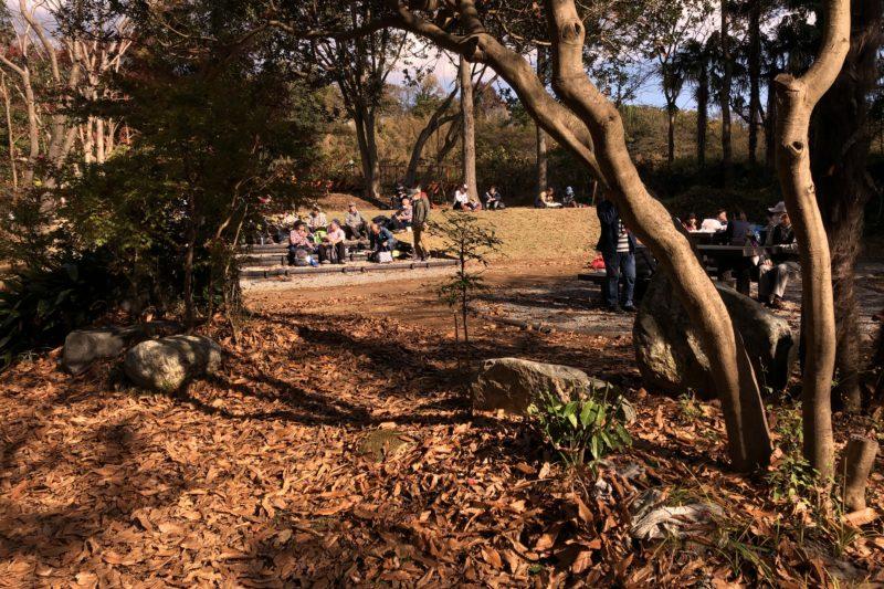 震生湖の休憩所