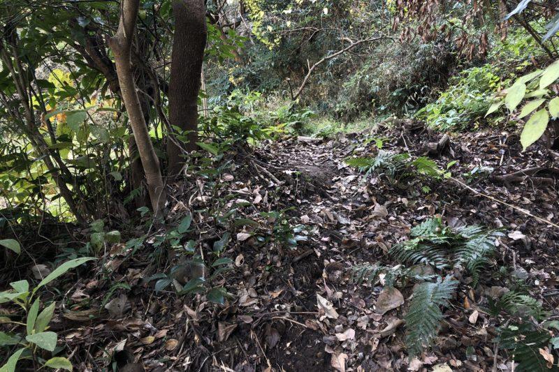 瓜ヶ谷やぐら群への道