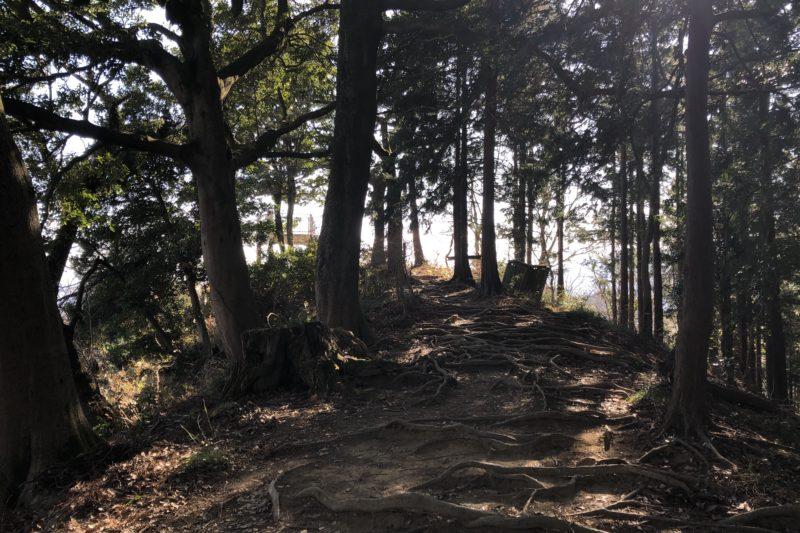 白山森林ハイキングコース