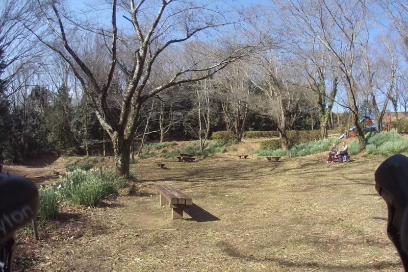 震生湖の弁財天横の広場