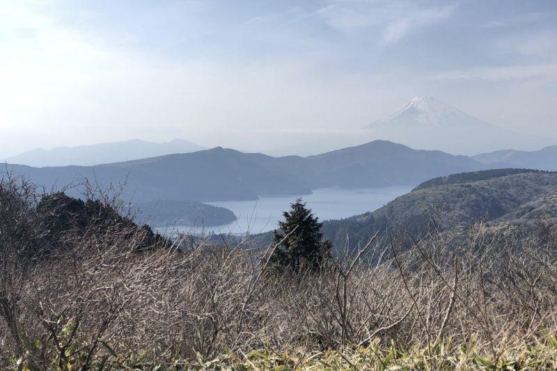大観山からの景色