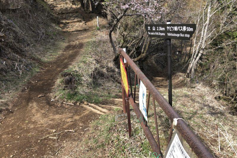 ヤビツ峠レストハウスからの登山道入口