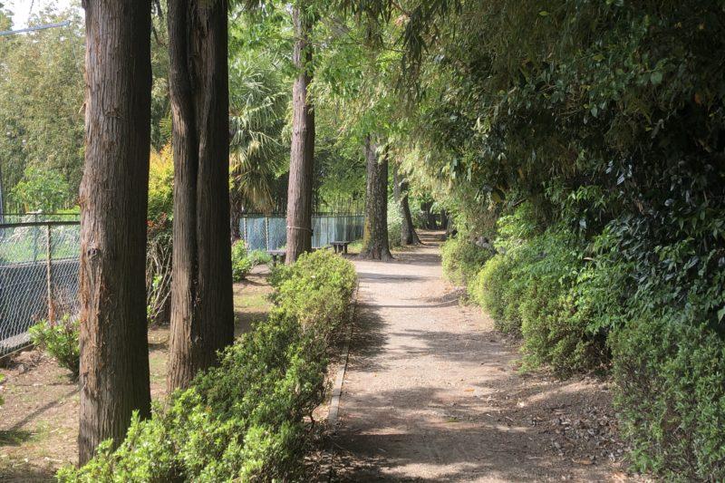 旧目久尻川ふるさと緑道