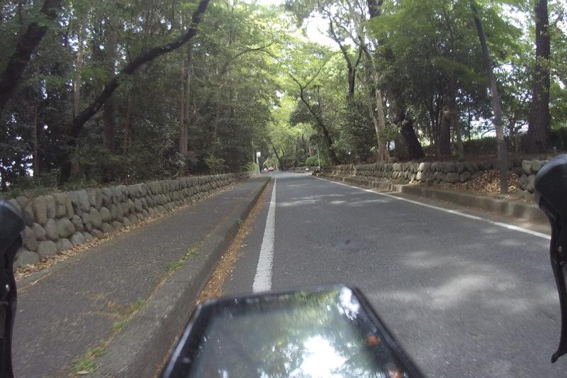 寒川神社の参道
