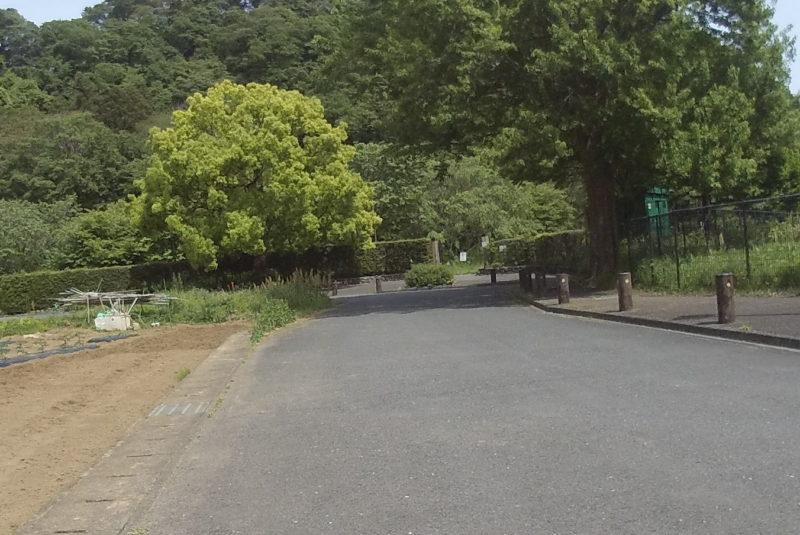 相模川自然の村公園入口