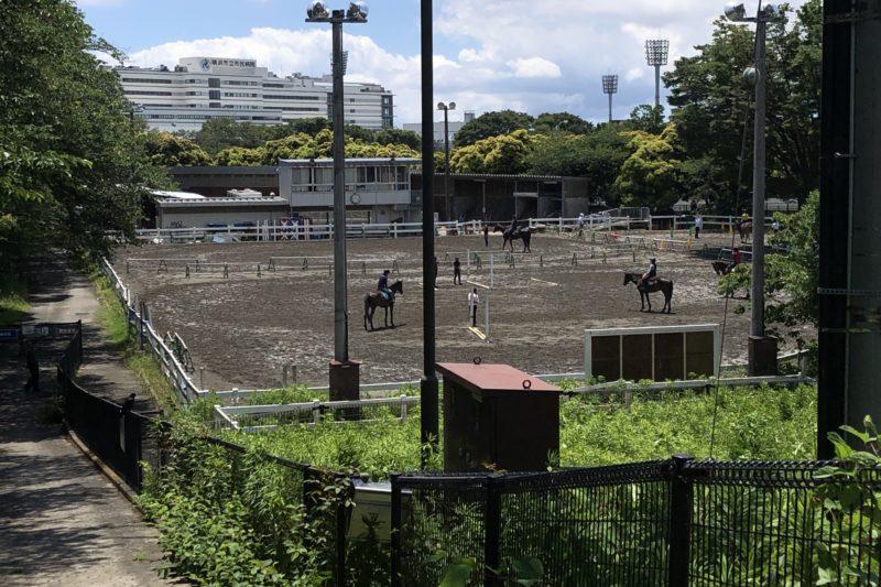 三ッ沢公園の馬術練習場