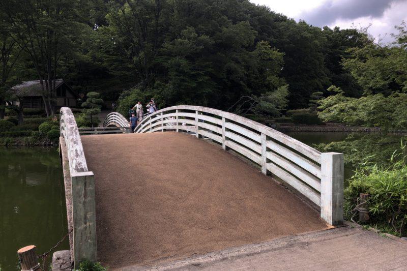 薬師池公園の太鼓橋