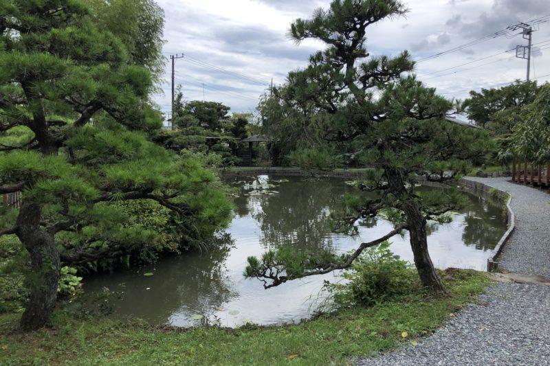 松永記念館の池