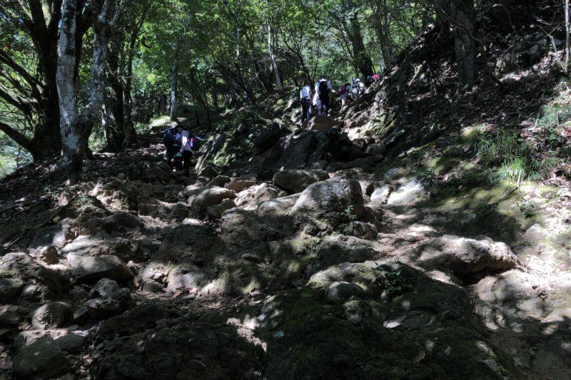 大山登山道