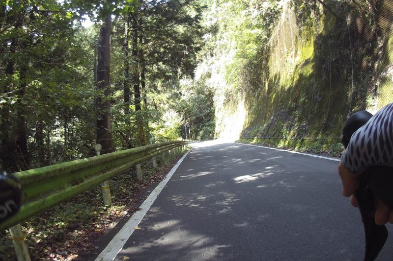 和田峠への道